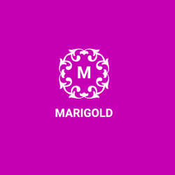 Marigold Beauty Logo Template