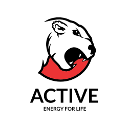 Active Bear - Energy For Life Logo Template